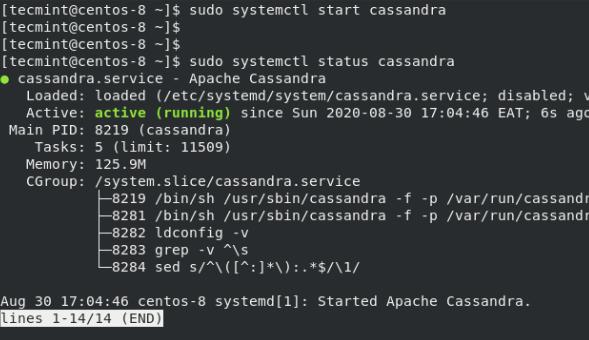Apache Cassandraステータスの確認